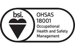 BSI Occupational Health and Safety Management
